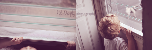 Kel Murphy Photography day 23 of 365 son looking outside waiting for pug dog