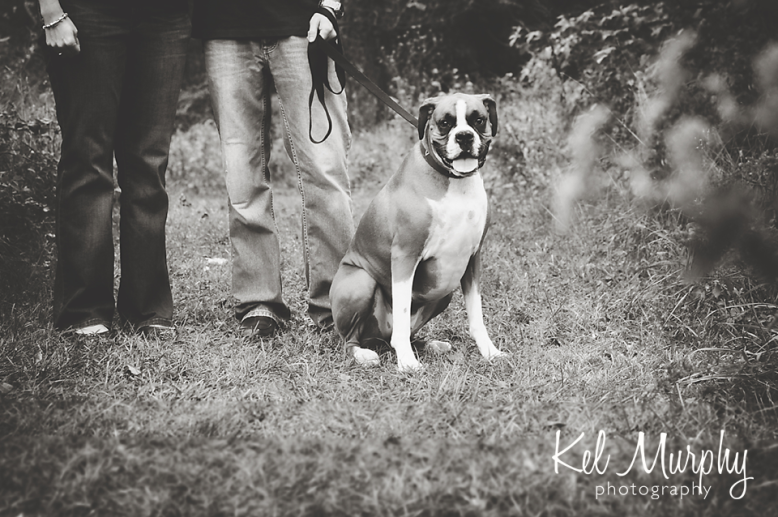 Kel Murphy Photography fall family and pet session with boxer dog and parents in Abington, PA