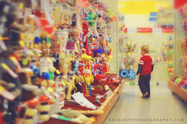 Kel Murphy Photography Day 48 of 365 son in pet store aisle looking for toys