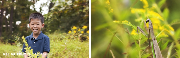 Little boy laughing outside in goldenrod plants and photo of praying mantis