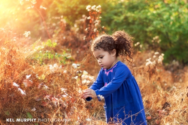 Little girl picking flowers outside in fall sunset three year old photo shoot session by Kel Murphy Photography